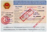Vietnam single entry visa for business type B3